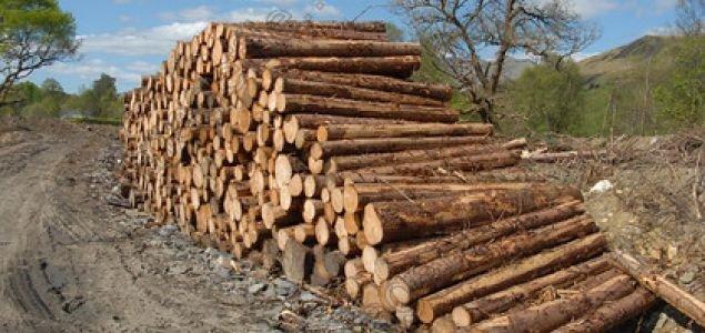 В Эстонии круглый лес дешевеет