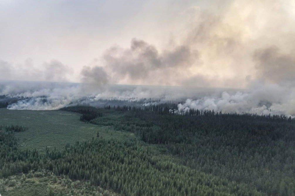 Read more about the article Лесные пожары в Сибири: обстановка на 5 августа