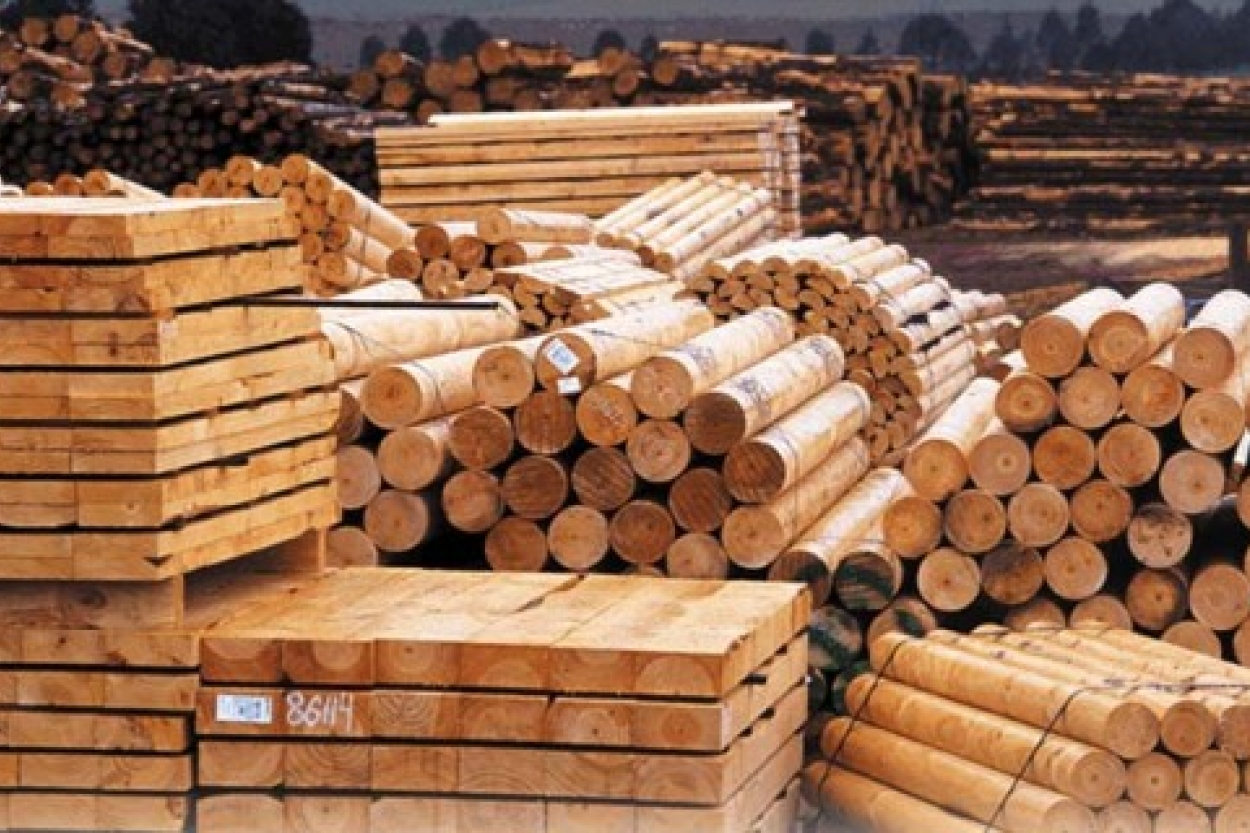 Белорусские лесоматериалы  для Рижского порта
