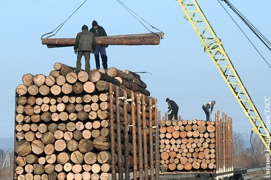 РФ: В Думу внесен еще один законопроект о долгосрочном хитром моратории на экспорт необработанной древесины