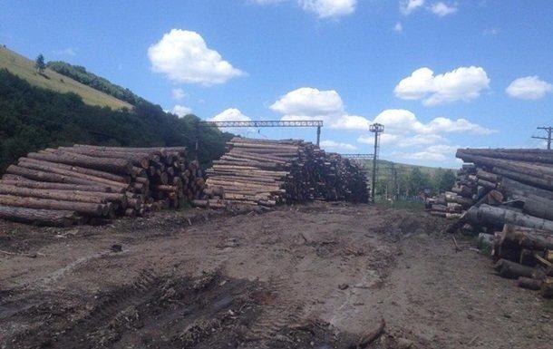 Фіскальна служба перевірить експортерів лісу
