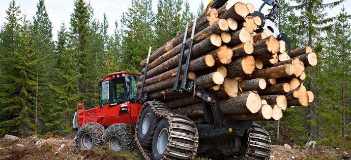 Мораторій пішов лісом: чому Порошенко не підтримав нову заборону експорту деревини