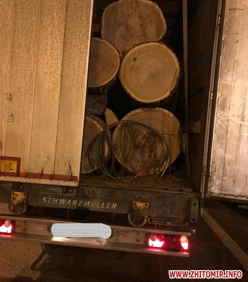 Нова екоінспекція Поліського округу влаштовує «облави» на машини з деревиною в Житомирській області