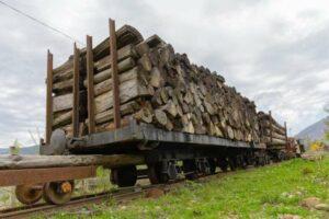 Одна п'ята незаконної деревини з України потрапляє до Польщі