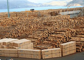 Китай: импорт круглого леса 2018