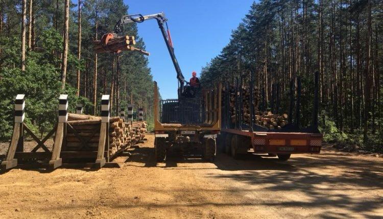 Лісівники Рівненщини вирішують, що робити з надлишком низькотоварної деревини