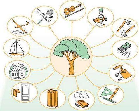 Деревина – традиційний відновлюваний сировинний ресурс