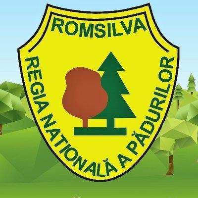 Румыния: Является ли честным ценообразование на рынке древесины?