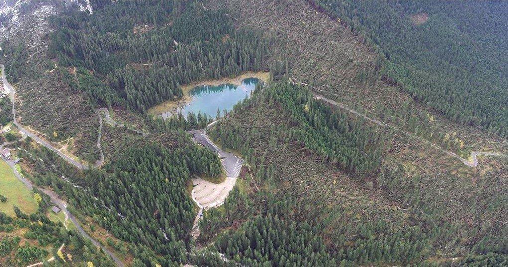 Поваленный ураганом лес в Италии продан в Китай
