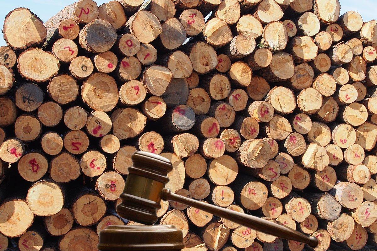 Стартовые цены на круглые сосновые лесоматериалы по Хмельницкому ОУЛХ на 4 квартал 2019 г.