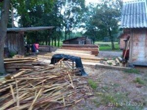 На Львівщині виявили пилораму, працівники якої незаконно вирубали дерева