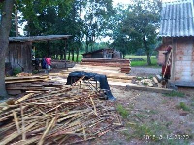 Read more about the article На Львівщині виявили пилораму, працівники якої незаконно вирубали дерева