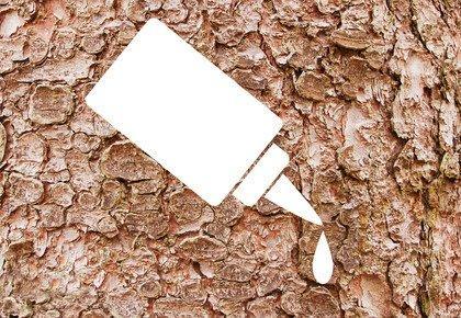 Новый химически чистый клей из древесной коры: новая перспектива для производителей плит и пиломатериалов