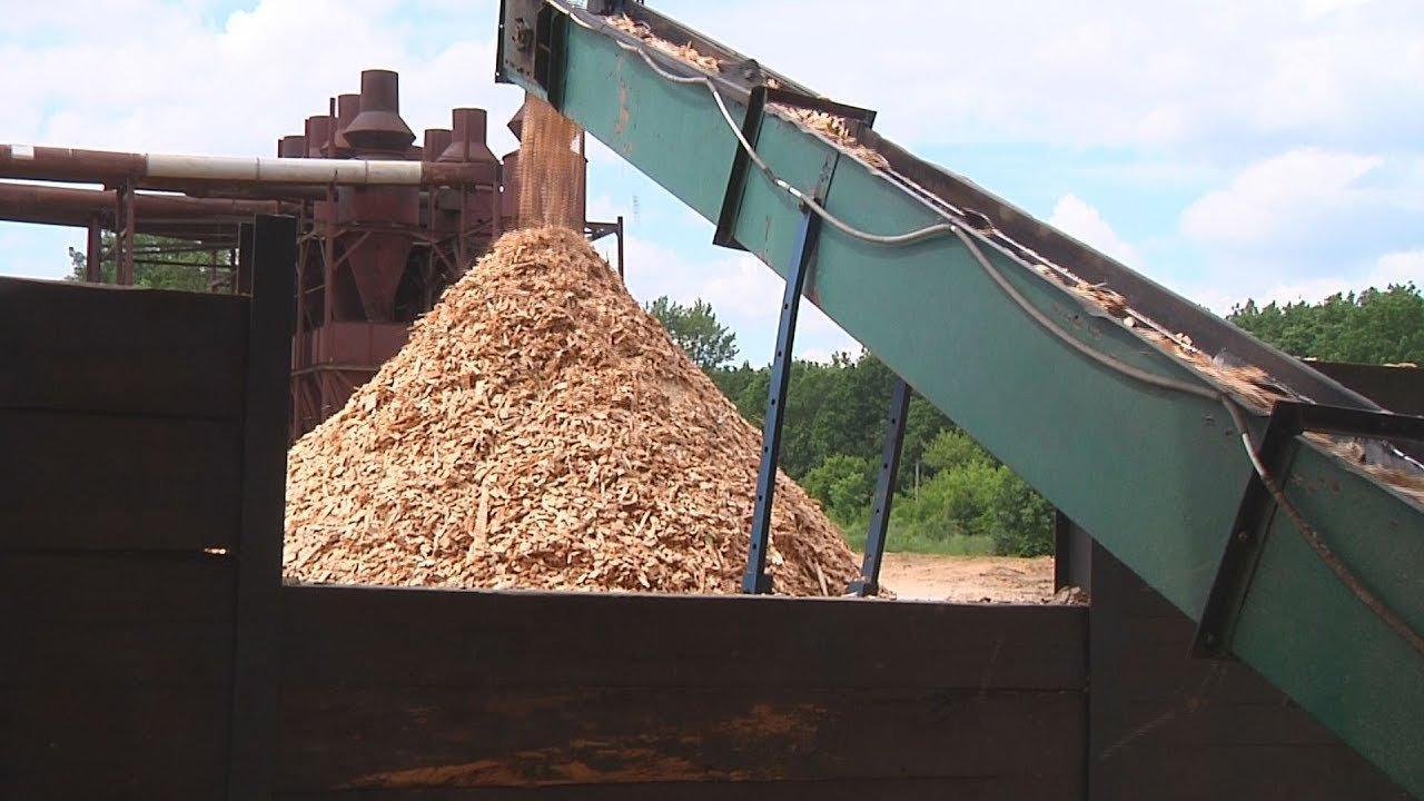 Деякі зміни на енергоринку: деревина може стати основним замінником природного газу