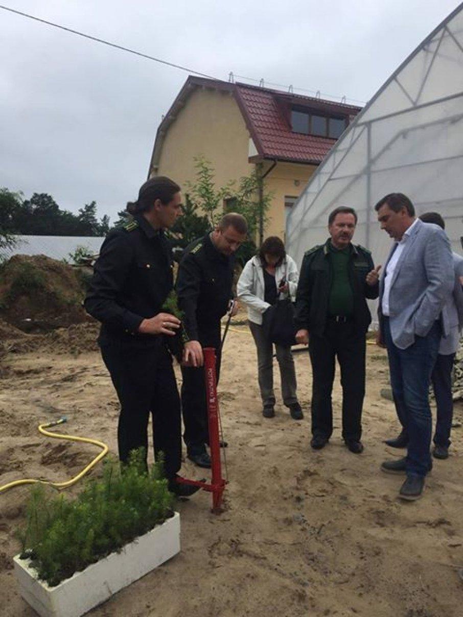 Нардеп Добродомов инициирует введение нулевой пошлины для оборудование для деревообработки