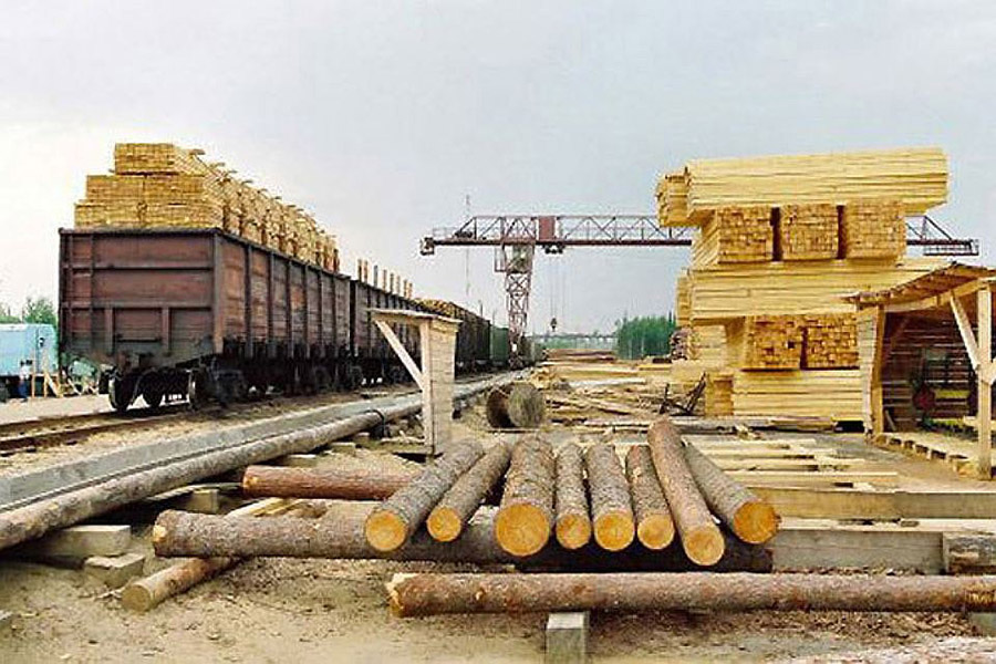 Торговля лесом обеспечила Латвии огромную прибыль
