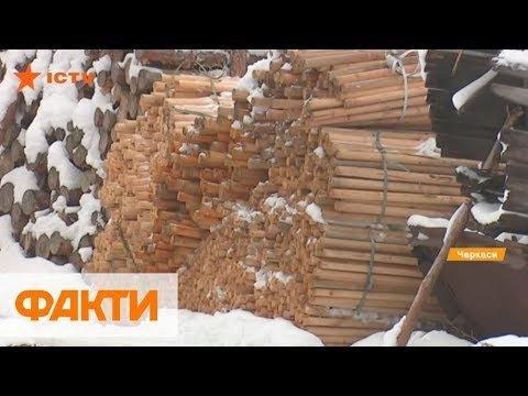 Как работает деревообрабатывающий комбинат и уровень зарплат