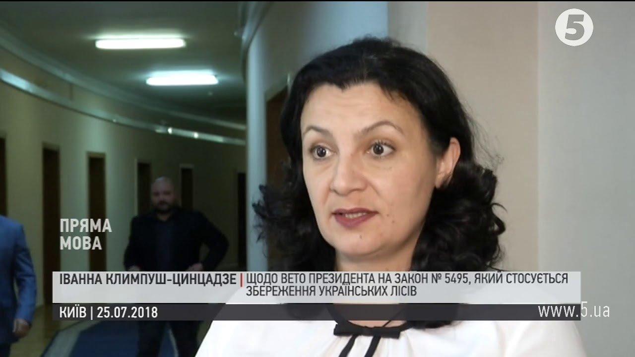 Климпуш-Цинцадзе пояснила, чому Порошенко ветував закон про контрабанду лісу
