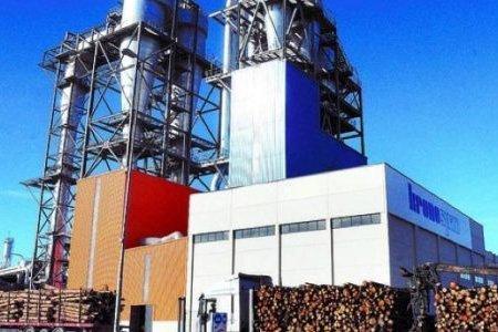 Kronospan планирует построить в Украине новый завод