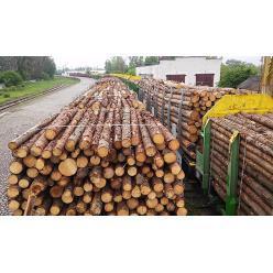Експорт паливної деревини під забороною: хто і навіщо блокує перевезення?