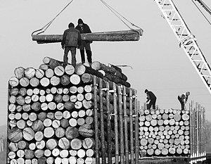 Как остановить массовое воровство российского леса для Китая