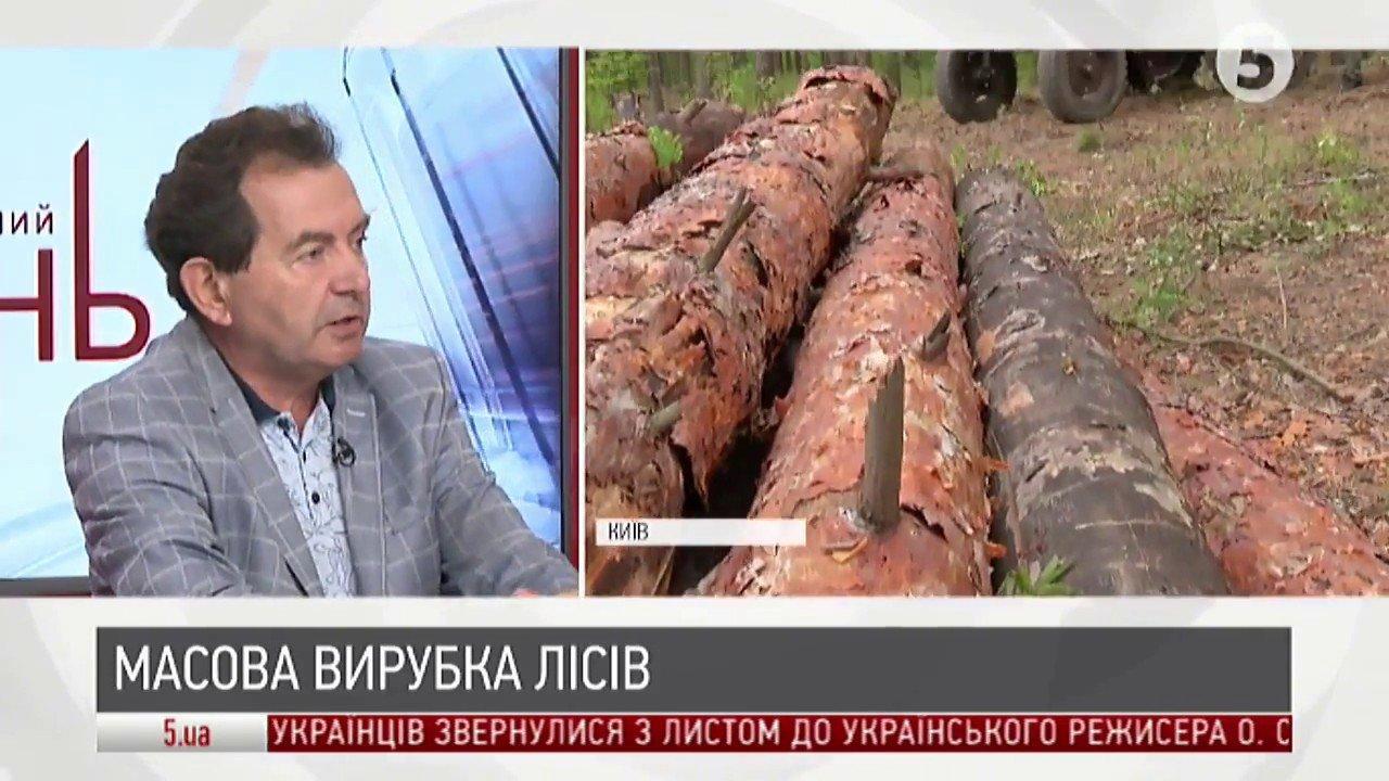 Масова вирубка карпатських лісів: чи є реальна загроза | Юрій Марчук |