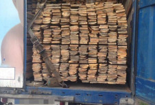 На Рівненщині патрульні зупинили вантажівку з лісом, але без документів