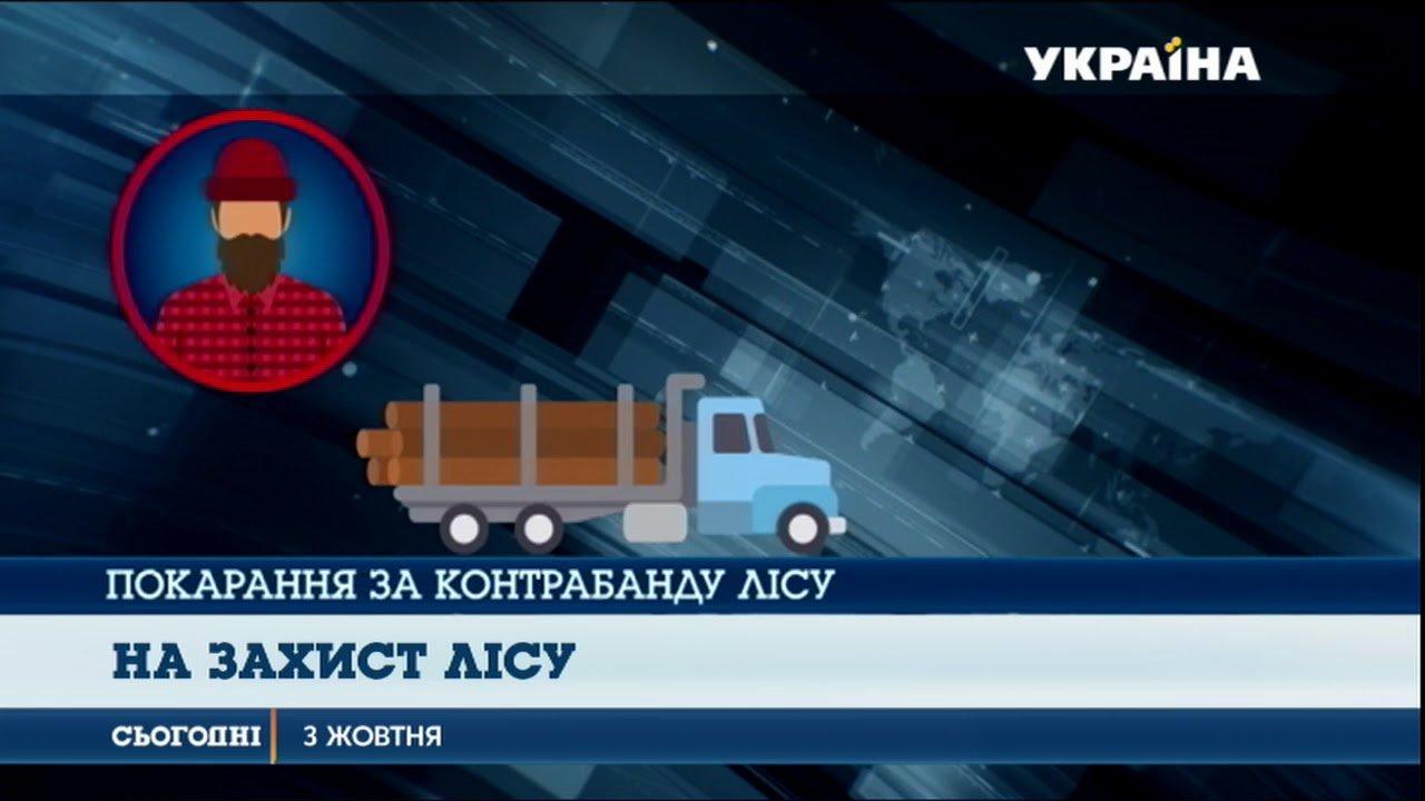Порошенко підписав закон про посилення покарання за незаконне вивезення необробленого лісу