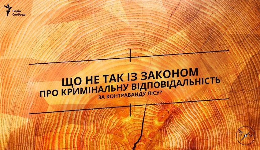 Що не так із законом про кримінальну відповідальність за контрабанду лісу?