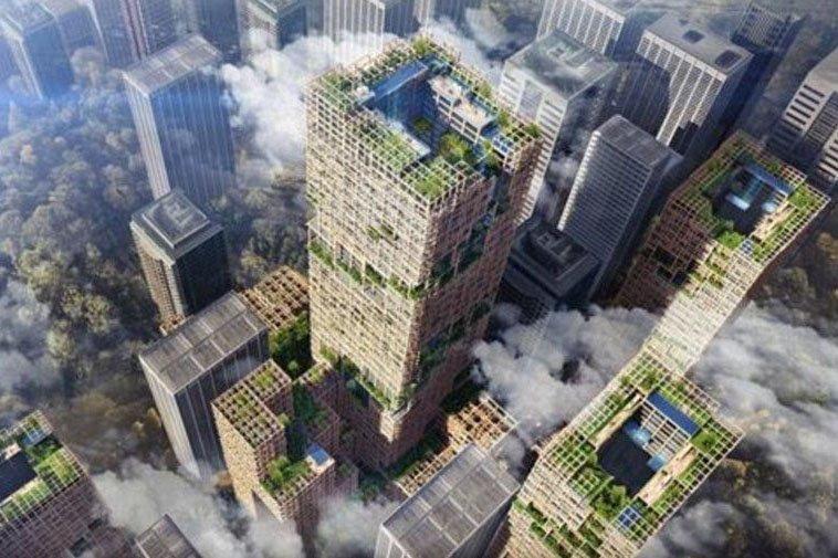 Дерево начинает постепенно заменять бетон, так как деревянные небоскребы распространяются по всему миру