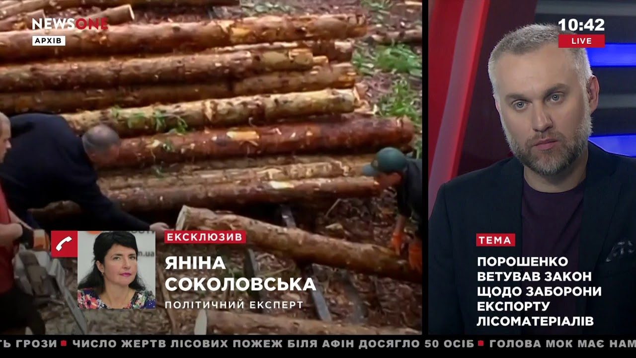 Соколовская: ситуация с экспортом леса-кругляка –сложная, Порошенко сейчас «стоит на растяжке» 24.07