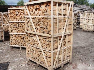 Вивозити не можна залишити в Україні: чи необхідна заборона на експорт дров