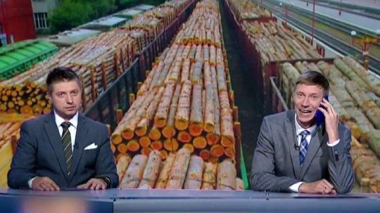 Українське дерево вирубають і продають в ЄС! Пожежники без роботи: нема лісу — нема пожеж!