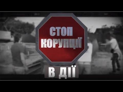 Влада довіряє фейковим дослідженням? Earthsight звинуватила Україну в корупції лісової галузі
