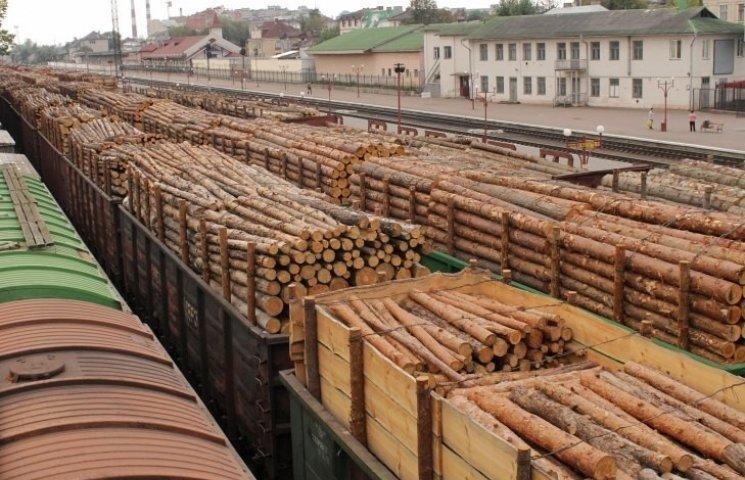 ЄС готовий до торгового арбітражу з Україною щодо скасування мораторію на ліс-кругляк