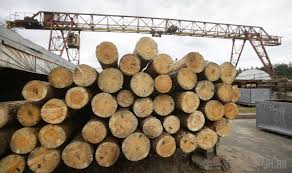 «Лесной» конфликт: Евросоюз пошел в торговую атаку