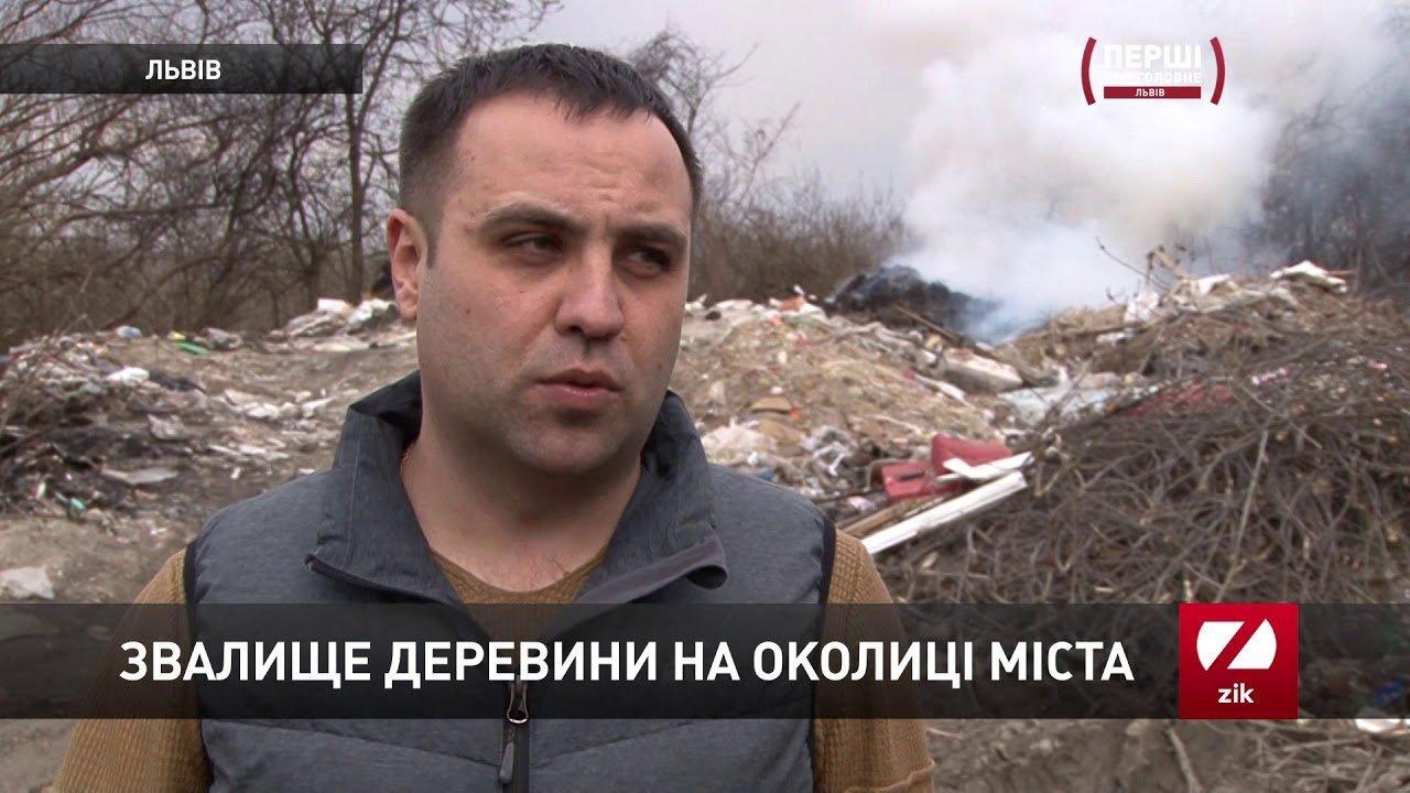 Звалище деревини виявили на околиці Львова