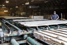 Американская лесная промышленность твердолиственных пород испытывает падение спроса и цен из-за торговой войны с Китаем
