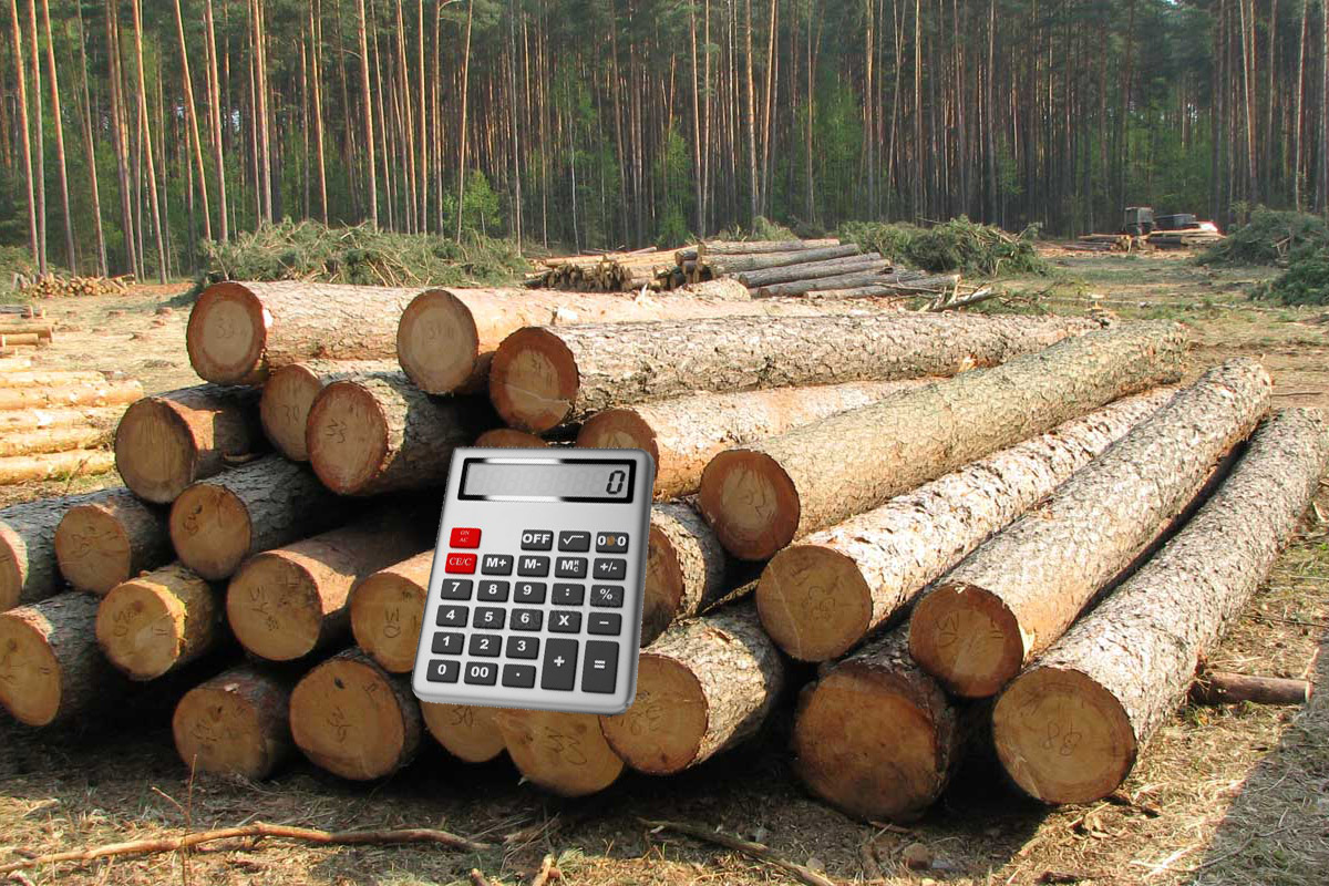 Ціна на деревину. Скільки, чому і як.