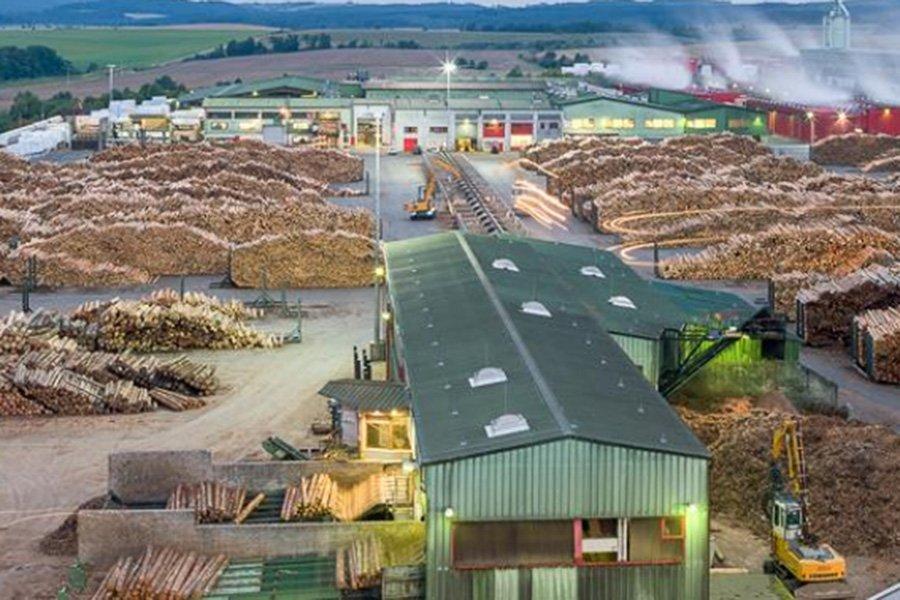 Лесная промышленность Германии теряет темпы экономического роста после пяти лет устойчивого развития