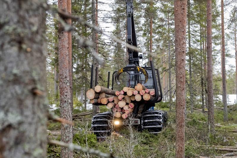 Ухудшение ситуации с доходами шведских лесопильных заводов