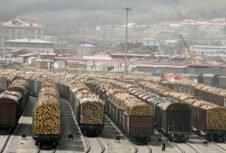В Китае началось строительство Китайско-российского центра деревообработки