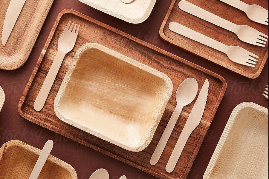 ООО «Гринвуд Индастриал» инвестирует 240 млн руб. в организацию производства деревянной посуды в России