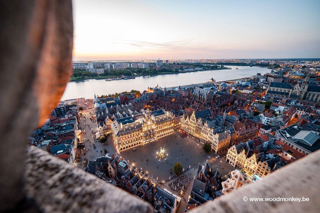 Сбои на европейском рынке пиломатериалов из-за жука-короеда будут продолжаться в течение нескольких лет