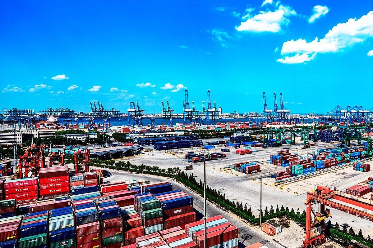 Экспорт хвойных лесоматериалов из Европы в Китай увеличился втрое в результате заражения лесов короедами