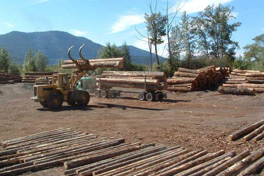 Шведское лесное агентство прогнозирует заготовку леса в  объеме 94 млн. м³