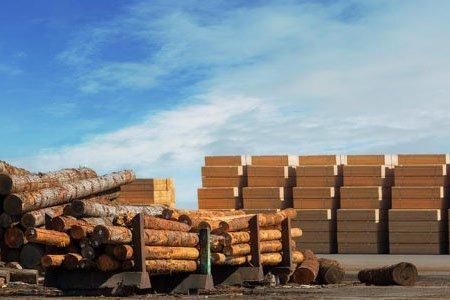 Китай: резкое падение импорта пиломатериалов из лиственных пород уравновешивает рост импорта пиломатериалов хвойных пород