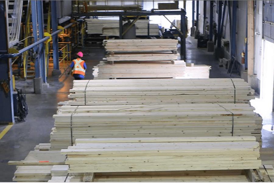 Лесной кризис Британской Колумбии в цифрах: экспортные продажи упали на 25%, а убыток — на 3,4 млрд долларов