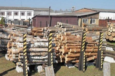 В 3 кв. 2019 г. цена балансовой древесины в Швеции выросла на 2,4%
