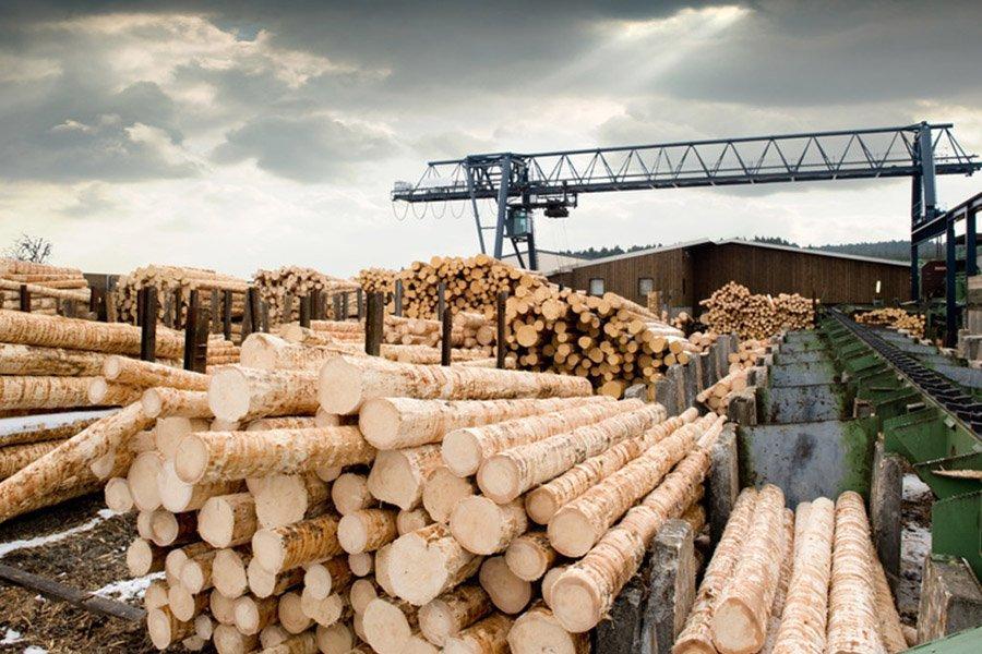 Первый договор реализации круглого леса из Амурской области заключен на СПбМТСБ